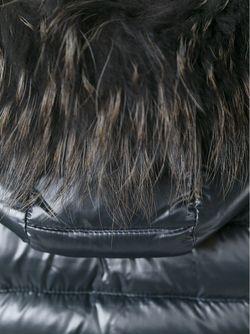 Дутая Куртка С Капюшоном Duvetica                                                                                                              серый цвет