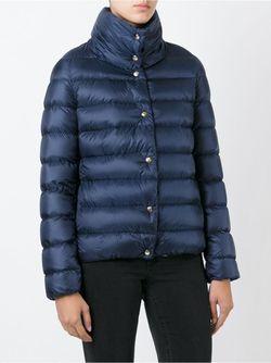 Дутая Куртка Plessis Moncler                                                                                                              синий цвет