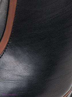 Полусапожки Betsy                                                                                                              черный цвет