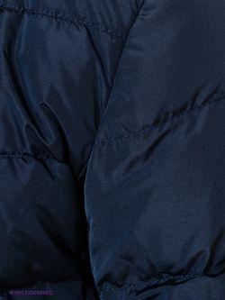 Пуховики Conver                                                                                                              синий цвет