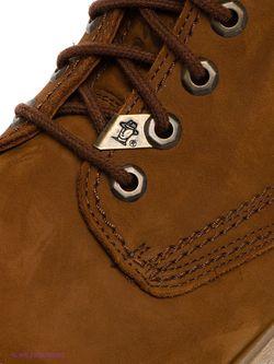 Ботинки Panama Jack                                                                                                              коричневый цвет