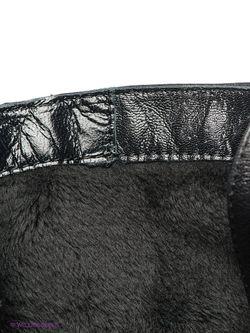 Сапоги Liska                                                                                                              чёрный цвет