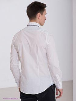 Рубашки Fred Mello                                                                                                              белый цвет