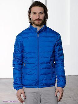 Куртки Baon                                                                                                              голубой цвет