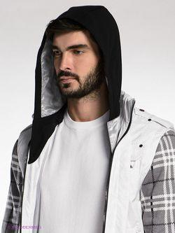 Куртки Absolutex                                                                                                              чёрный цвет