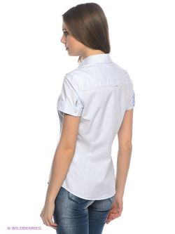 Рубашки Gant                                                                                                              голубой цвет
