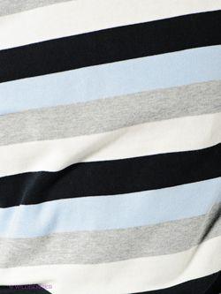 Джемперы Tom Farr                                                                                                              синий цвет
