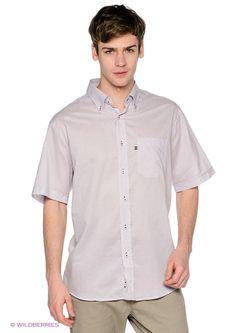 Рубашки Navigare                                                                                                              фиолетовый цвет