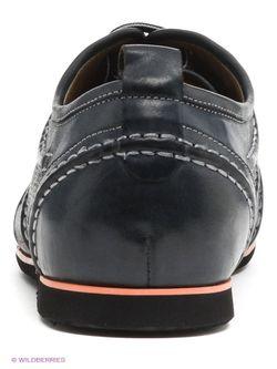 Ботинки Companion                                                                                                              None цвет