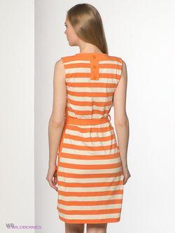 Платья Fever                                                                                                              оранжевый цвет