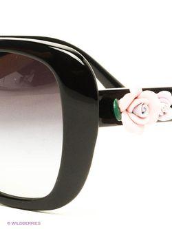 Солнцезащитные Очки Dolce & Gabbana                                                                                                              чёрный цвет