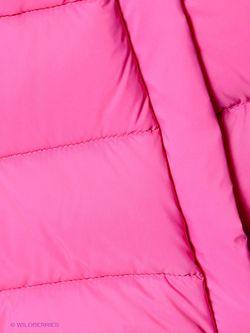 Жилеты Baon                                                                                                              розовый цвет