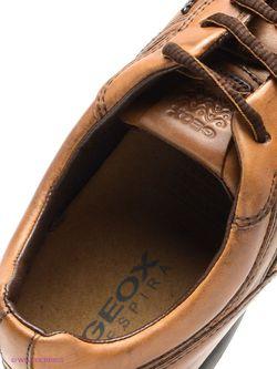 Ботинки Geox                                                                                                              None цвет