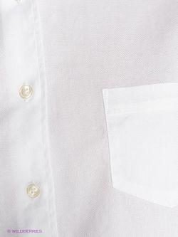 Рубашки Gant                                                                                                              None цвет