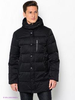 Пуховики Calvin Klein                                                                                                              черный цвет