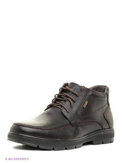 Ботинки SHOIBERG                                                                                                              коричневый цвет