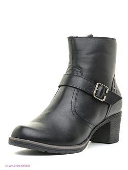 Ботинки SHOIBERG                                                                                                              черный цвет
