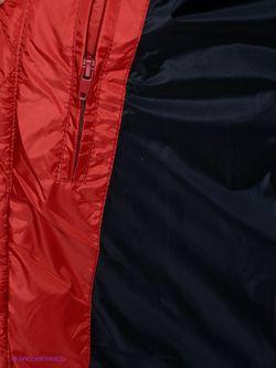 Пуховики Conver                                                                                                              красный цвет
