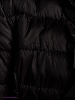 Куртки Oltre                                                                                                              None цвет