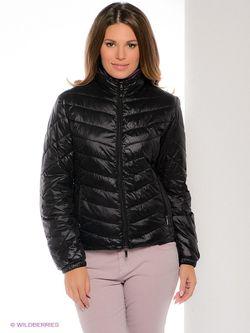 Куртки Oltre                                                                                                              чёрный цвет