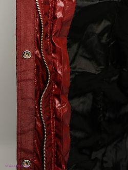 Пуховики F5                                                                                                              красный цвет