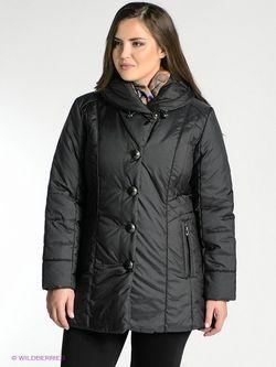 Куртки WEGA                                                                                                              чёрный цвет
