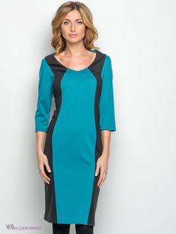 Платья Spicery                                                                                                              чёрный цвет