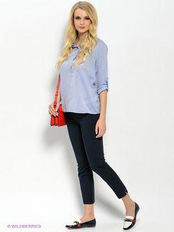 Рубашки U.S. Polo Assn.                                                                                                              голубой цвет
