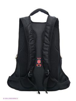 Рюкзаки Polar                                                                                                              чёрный цвет
