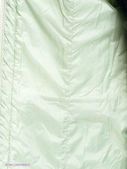 Куртки Steinberg                                                                                                              зелёный цвет