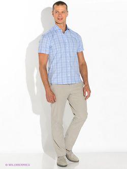 Рубашки Alfred Muller                                                                                                              голубой цвет