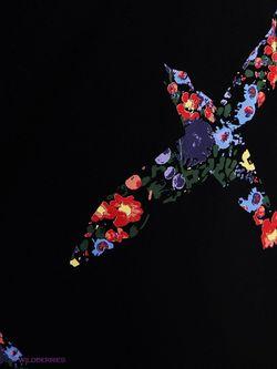 Джемперы Zarina                                                                                                              чёрный цвет