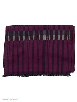 Шарфы Labbra                                                                                                              фиолетовый цвет