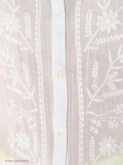 Блузки Malvin                                                                                                              белый цвет