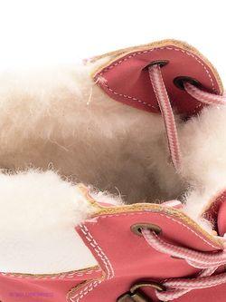 Ботинки Keddo                                                                                                              розовый цвет