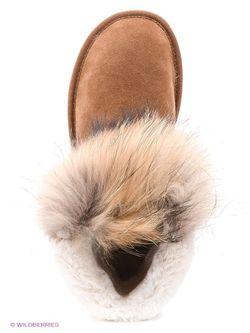Угги Keddo                                                                                                              коричневый цвет