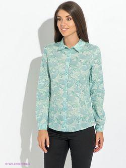 Блузки Baon                                                                                                              голубой цвет