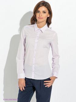 Блузки Baon                                                                                                              фиолетовый цвет