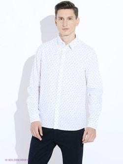 Рубашки Baon                                                                                                              фиолетовый цвет