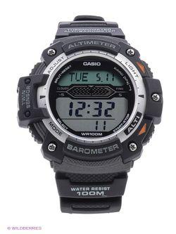 Часы Casio                                                                                                              чёрный цвет