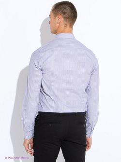 Рубашки DRYWASH                                                                                                              серый цвет