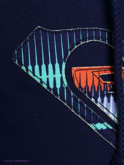 Свитшоты Roxy                                                                                                              синий цвет