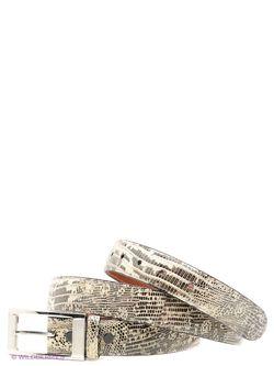 Ремни Pan American leather                                                                                                              серый цвет