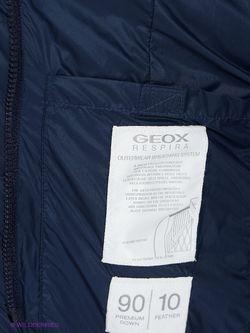 Пуховики Geox                                                                                                              голубой цвет