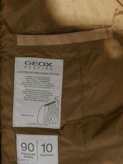 Пуховики Geox                                                                                                              Золотистый цвет