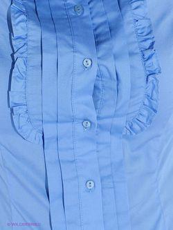 Блузки Concept Club                                                                                                              голубой цвет