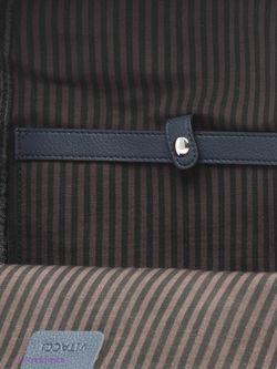Рюкзаки Vitacci                                                                                                              синий цвет