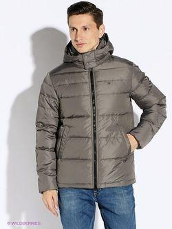 Куртки Tommy Hilfiger                                                                                                              коричневый цвет