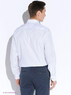 Сорочки Tommy Hilfiger                                                                                                              голубой цвет