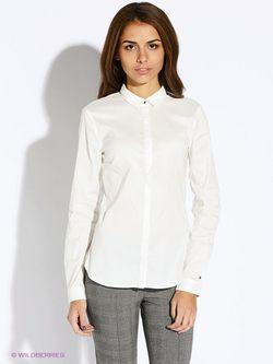 Блузки Tommy Hilfiger                                                                                                              белый цвет
